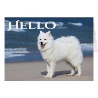 Cartão Cão de filhote de cachorro branco do Samoyed -