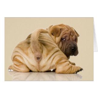 Cartão Cão de filhote de cachorro de Shar-pei do chinês