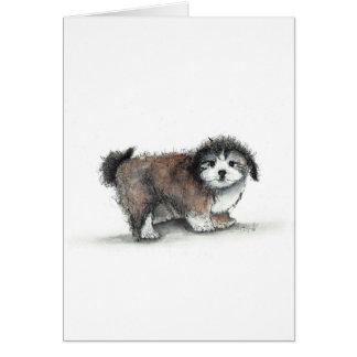 Cartão Cão de filhote de cachorro de Shihtzu, animal de