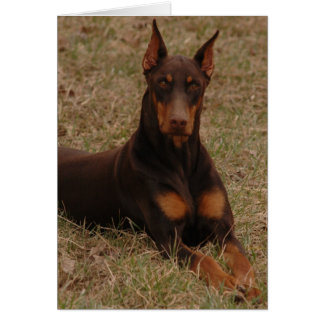 Cartão Cão de guarda final