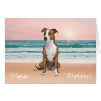 Cartão Cão de Pitbull que senta-se no aniversário do por