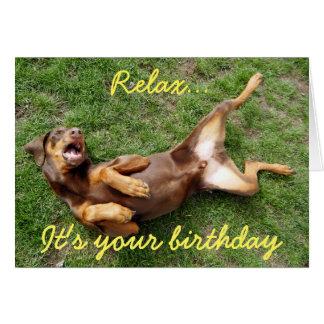 Cartão Cão de relaxamento do doberman