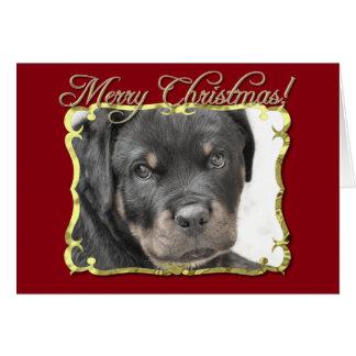 Cartão Cão de Rottweiler