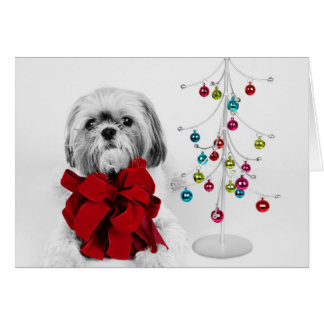 Cartão Cão de Shih Tzu com arco vermelho pela árvore de