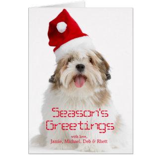 Cartão Cão de sorriso de Lhasa Apso que veste o chapéu do