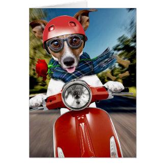 Cartão Cão do patinete, jaque russell