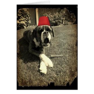 Cartão Cão do pugilista do tanoeiro de Tommy