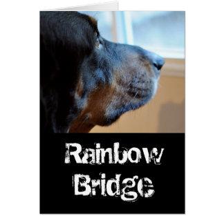 Cartão Cão do racum da ponte do arco-íris