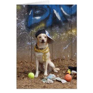 """Cartão Cão do rapper - """"Lil Sneezy """""""