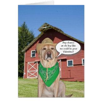 Cartão Cão do vaqueiro/namorados engraçados do
