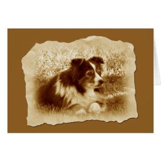 Cartão Cão do vintage em tons do Sepia