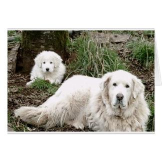 Cartão Cão e filhote de cachorro de grandes Pyrenees