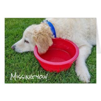 Cartão cão-faltante triste você