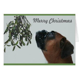Cartão Cão Jolie do pugilista com visco