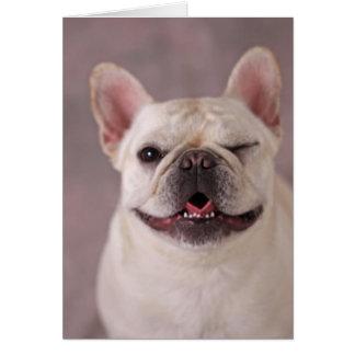 Cartão Cão pisc engraçado buldogue francês
