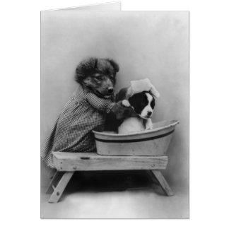 Cartão Cão que banha o cão