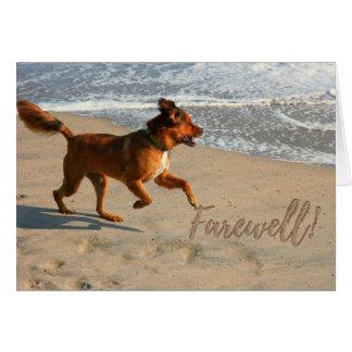 Cartão Cão Running de adeus da aposentadoria na praia