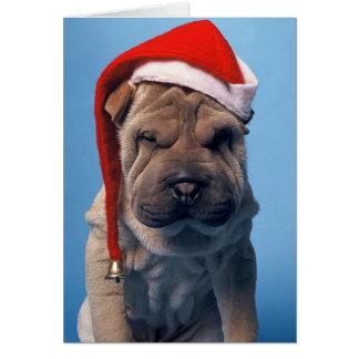 Cartão Cão sonolento do mas Chrstmas de Shar Pei x
