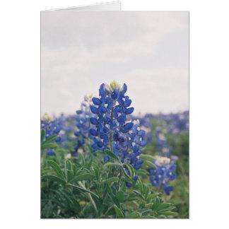 Cartão Capota azul