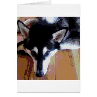 Cartão Cara bonito do Malamute do Alasca