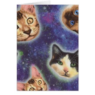 Cartão cara do gato - gato - gatos engraçados - espaço do