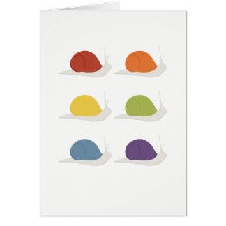 Cartão Caracóis do arco-íris | | no fundo branco