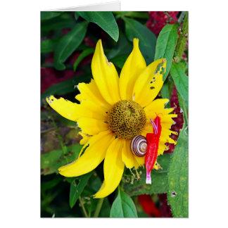 Cartão Caracol e flor