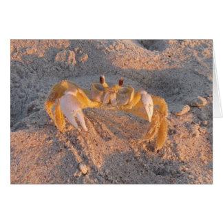 Cartão Caranguejo da areia