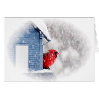 Cartão Cardeal do dia da neve - pássaro