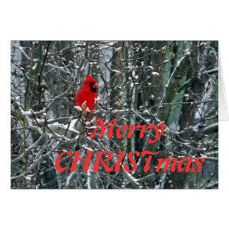 Cartão Cardeal na neve