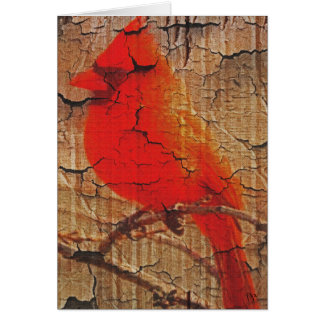 Cartão Cardeal no vidoeiro