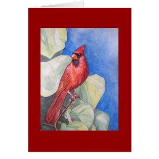 CARTÃO cardinal deliciosa vermelho