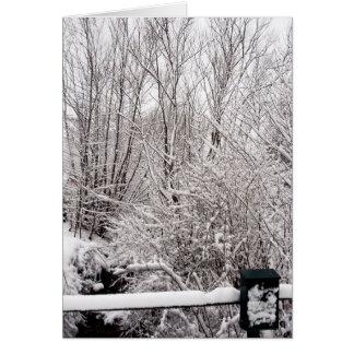 Cartão Cargo nevado