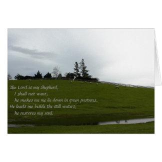 Cartão Carneiros que pastam no pasto verde perto da lagoa