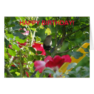 Cartão Carriça & rosas, aniversário