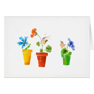 Cartão Carriças e Flowerpots
