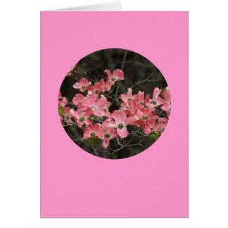 """Cartão Cartão, do """"flores Dogwood no círculo"""" # 5"""