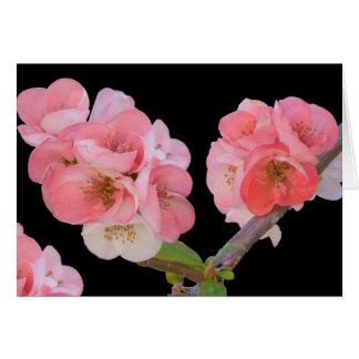 Cartão Cartão, flores da ameixa