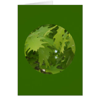 """Cartão Cartão, """"folhas em um círculo"""" J-1"""