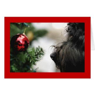 Cartão cartão-loofah do feriado
