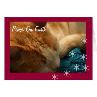 Cartão Cartão: Sesta Ephesians do gato do Natal
