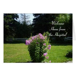 Cartão Casa das flores Hospital-Cor-de-rosa