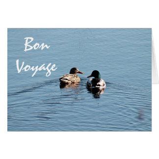 Cartão Casal do pato do pato selvagem
