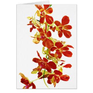 Cartão Cascata de orquídeas alaranjadas