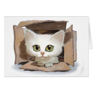 Cartão Catbox