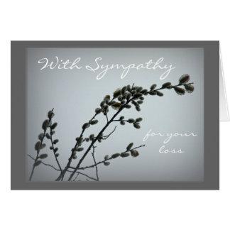 Cartão Catkins do salgueiro de bichano da primavera