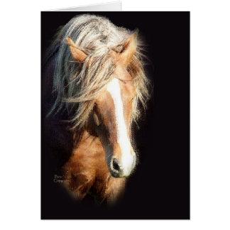 Cartão Cavalo contra o preto