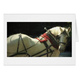 Cartão Cavalo de carruagem