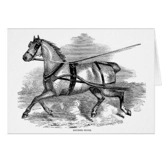 Cartão Cavalo de chicote de fios,