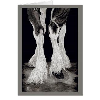 """Cartão """"Cavalo de esboço do condado das penas frescas"""" -"""
